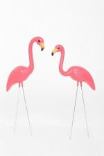8-2 flamingoes
