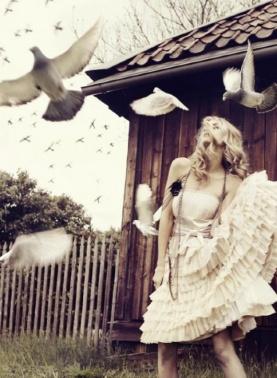 09-13 doves ruffles
