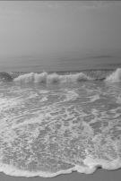10-18 gray surf