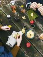 11-29 fall picnic