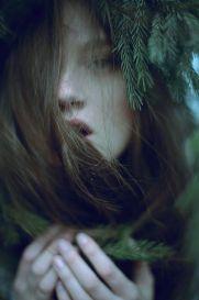 12-13 pine spirit