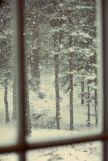 12-13 snow window