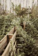 12-20 merry + happy