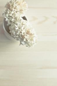 3-14 hyacinths