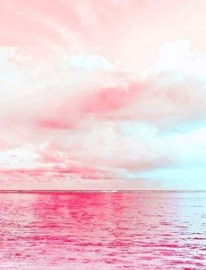 3-21 pink skies