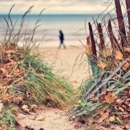 10-3 fall beach