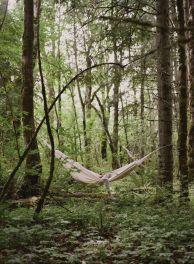 10-10 hammock