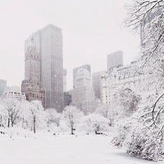 12-19 central park snow